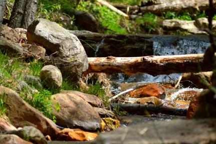 Hortons Creek Hike