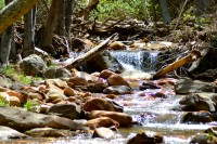Hortons Creek Hike 2